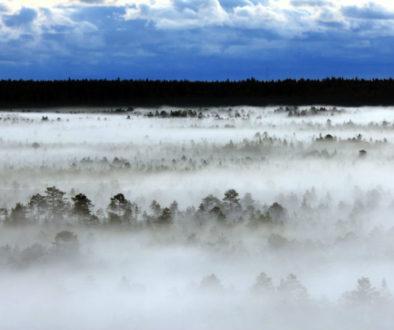 Estonia-landscape-WP-1