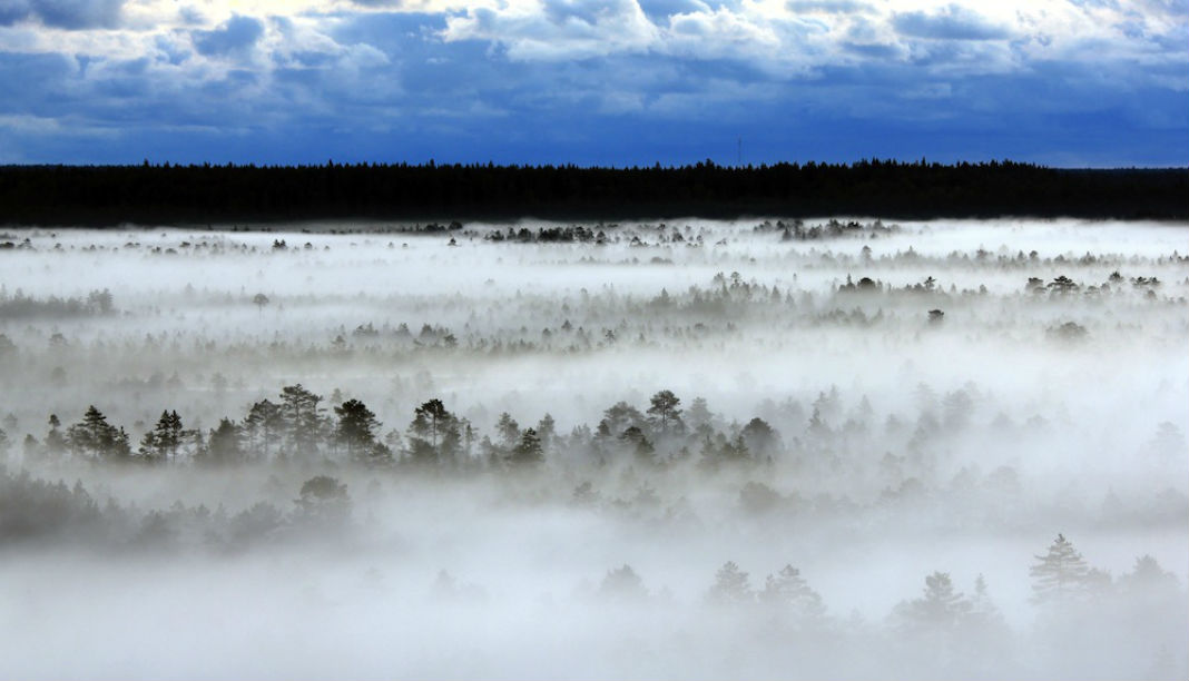 Estonia-landscape-WP-1